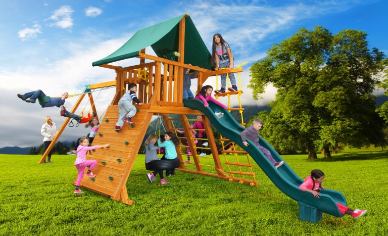 Extreme Swing Set 1 wooden backyard playset - Jungle Gyms Canada